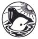 Морские млекопитающие Голарктики