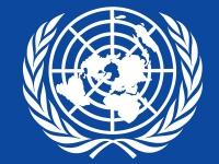 Модель ООН в АлтГУ 2015