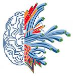 От фундаментальной нейронауки к практике