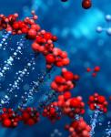 Генетика - 2020/2021