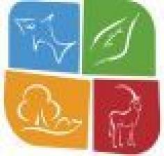 Биоразнообразие и экологические проблемы  сохранения дикой природы