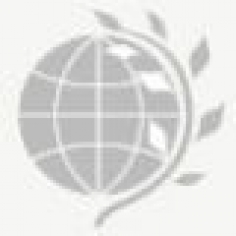 Набор статей в международный научный бюллетень