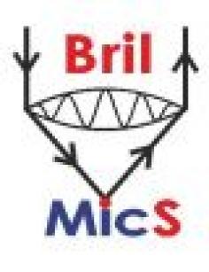 BrilMics 2013