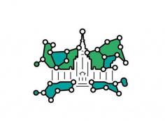 Ломоносовские чтения. Научно-практическая конференция «Региональное измерение цифровой трансформации»